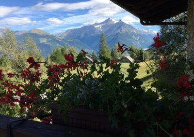 Hotel Notre Maison Vetan fiori